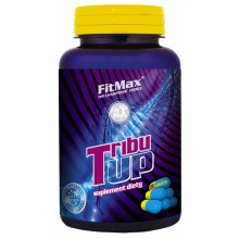 FM Tribu Up, 120caps/600mg