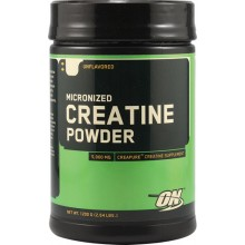 Creatine Powder ( 2000 gr.)