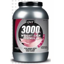 GAIN 3000 (1.300 )
